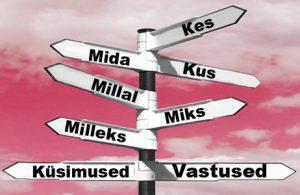 Часто задаваемые вопросы начинающего предпринимателя об бухгалтерском учёте Эстонии
